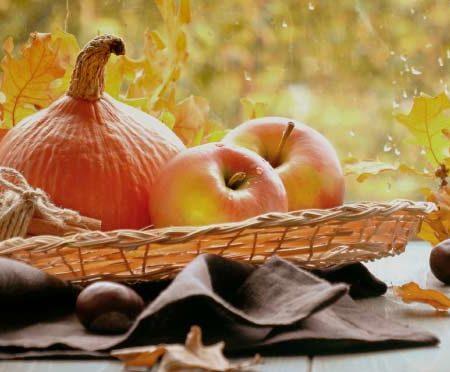 aperipizza-novembre-apizza